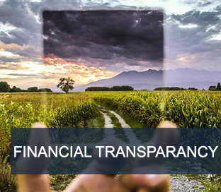 wppmcFINANCIALTRANSPARANCY